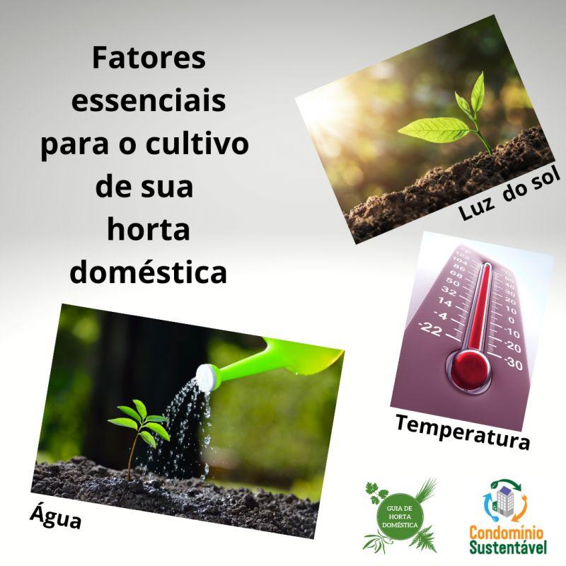 Horta post 4 - fatores essenciais