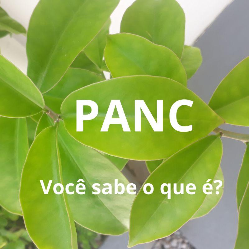 horta post 7 pancs
